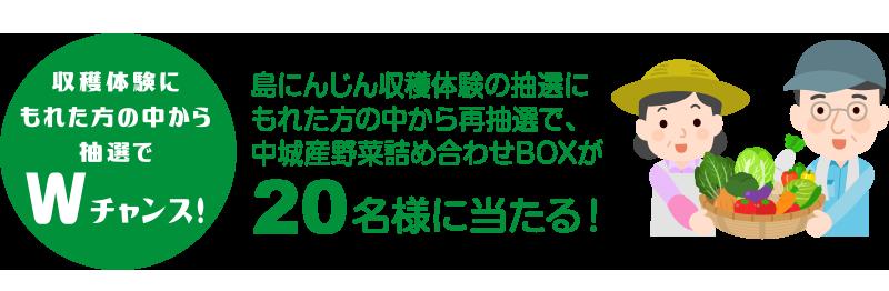 中城産野菜詰め合わせBOX20名様にプレゼント